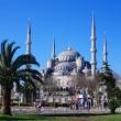 Blaue Moschee in Istanbul