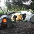 Zeltlager im Regenwald