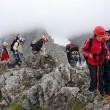 Schülergruppe beim Klettern