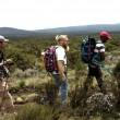 Führung am Kilimandscharo