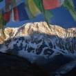 Sonnenaufgang Annapurna 1