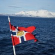 Fahrt mit der Hurtigrute